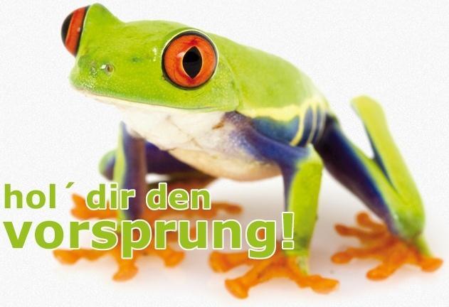 Webdesign Agentur Graz - Newsletter System für Online Marketing